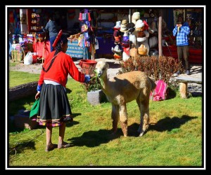Sacred Valley 1