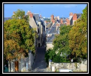Angers 8