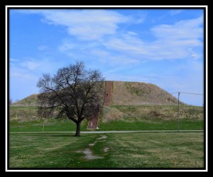 Cahokia Mounds 3