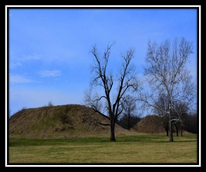 Cahokia Mounds 4