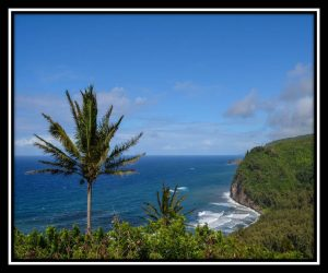 Big Island 103