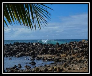 Big Island 11