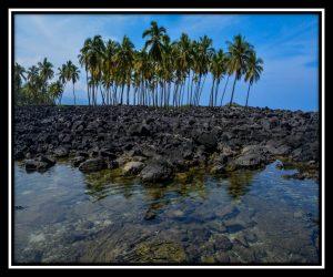 Big Island 65