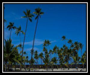 Big Island 69