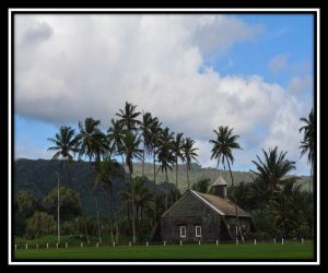 Maui 19