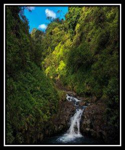 Maui 24