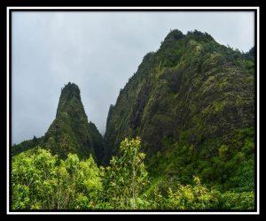 Maui 42