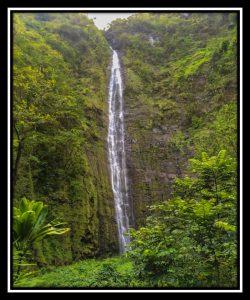 Maui 45